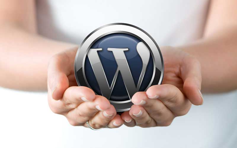 Free WordPress Consultant in Kolkata
